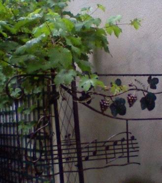jardinsecret3.1182757964.jpg