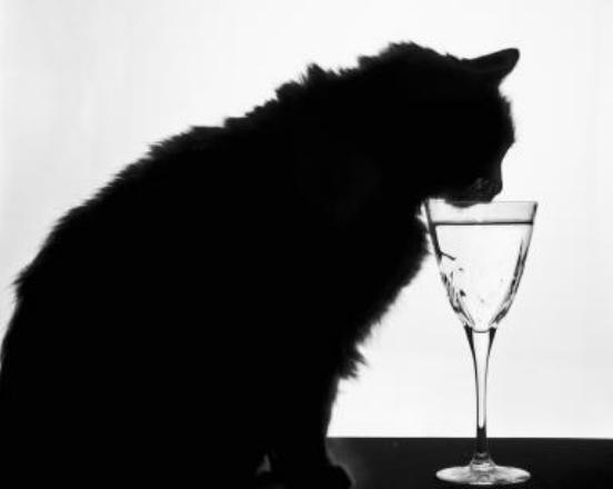 omdrinking