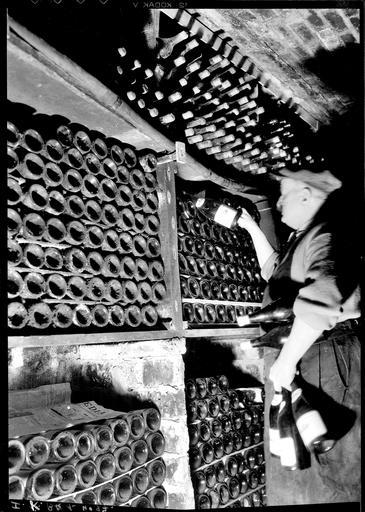 nde Rangement des bouteilles dans une cave
