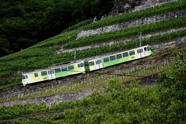 tramwayaigle