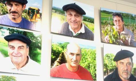 viticulteursplaimont