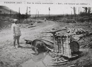 verdun1917